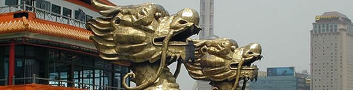 Conociendo al dragón 11-01