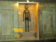 Museu de Medicina Tradicional Xinesa. Shanghai